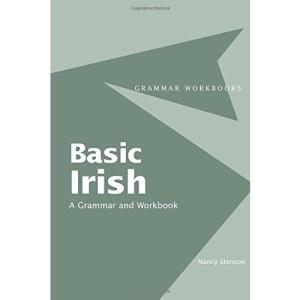 Basic Irish: A Grammar and Workbook (Grammar Workbooks)
