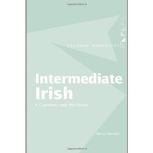 Intermediate Irish: A Grammar and Workbook (Grammar Workbooks)