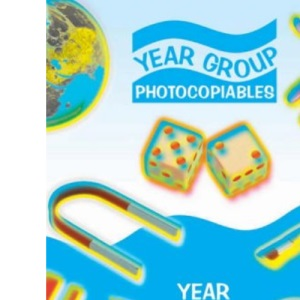 Teaching Year 2: Year 2 (Year Group Photocopiables)