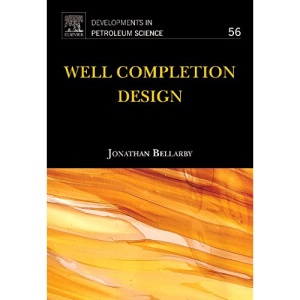 Well Completion Design (Developments in Petroleum Science)