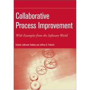 Collaborative Process Improvement: With Examples from the Software World (Practitioners)