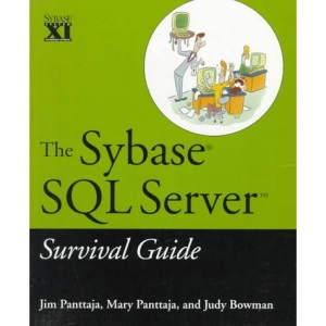 The Sybase SQL Server Survival Guide
