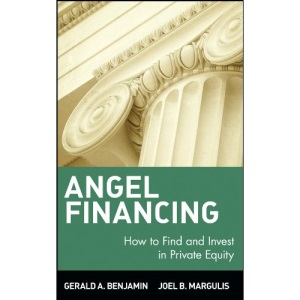 Angel Financing: How to Find and Invest in Private Equity: 75 (Wiley Investment)
