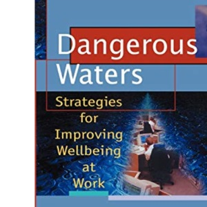Dangerous Waters: Strategies for Improving Wellbeing at Work: 2 (Wiley Series in Work Well-Being & Stress)
