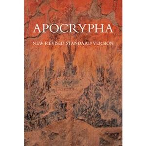NRSV Apocrypha Text Edition Hardback NRAO: NRSV Text Edition Hardback NRAO (Bible Nrsv)