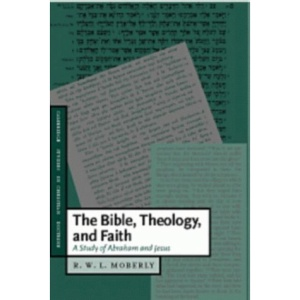 The Bible, Theology, and Faith: A Study of Abraham and Jesus (Cambridge Studies in Christian Doctrine)