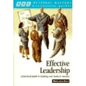 Effective Leadership: How to Lead Your Team to Success (Business Matters Management Guides)
