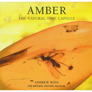 Amber: The Natural Time Capsule (Earth)