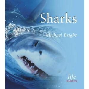 Sharks (LIFE SERIES)