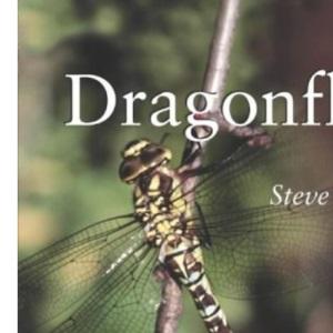 Dragonflies (Life S.)