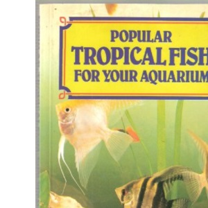 Popular Tropical Fish for Your Aquarium