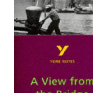 York Notes on Arthur Miller's View from the Bridge