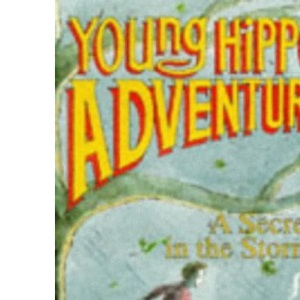 The Secret in the Storm (Young Hippo Adventure)