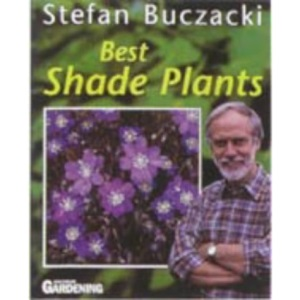 Best Shade Plants
