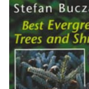 Best Evergreen Trees and Shrubs (Amateur Gardening Guide)