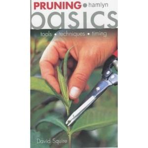 Pruning Basics
