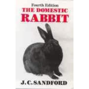 The Domestic Rabbit