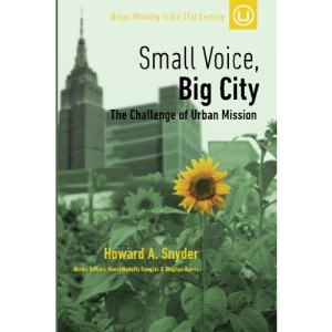 Small Voice, Big City: The Challenge of Urban Mission: Volume 6 (Urban Ministry in the 21st Century)