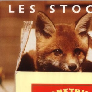 Something in a Cardboard Box: Tales from a Wildlife Hospital