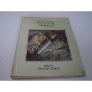 Practical Pruning (Concorde Books)