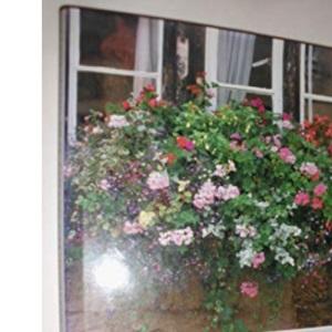 Wonderful Windowboxes