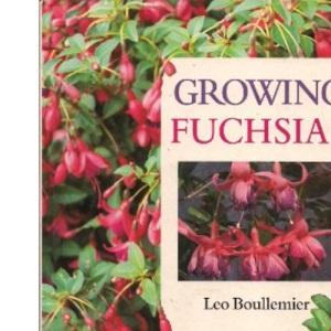 Growing Fuchsias
