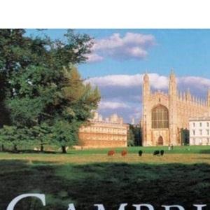 Cambridge (Groundcover)