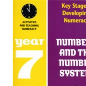 Developing Key Stage 3 Numeracy: Numbers System Year 7: Activities for Teaching Numeracy (Developing Numeracy)