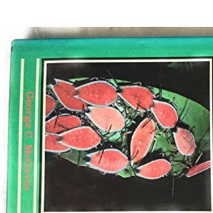 Bugs of the World: 13