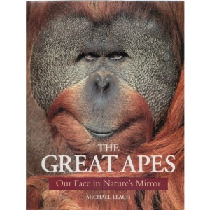 The Great Apes: Our Face in Nature's Mirror