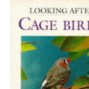 Looking After Cage Birds