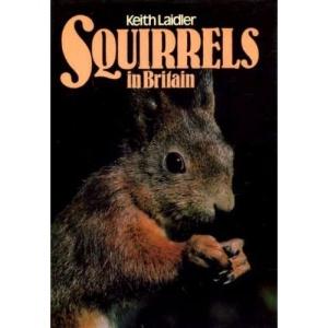 Squirrels in Britain
