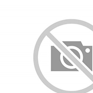 LADYBIRD PICTURE DICTIONARY