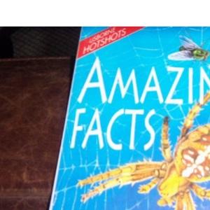 Amazing Facts (Usborne Hotshots)