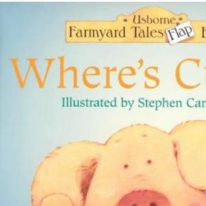 Where's Curly? (Farmyard Tales Flap Books)