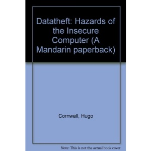 Datatheft: Hazards of the Insecure Computer (A Mandarin paperback)