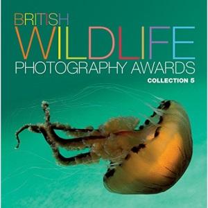 British Wildlife Photography Awards: Collection 5