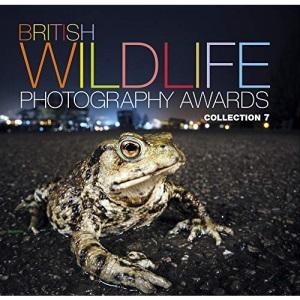 British Wildlife Photography Awards: Collection 7