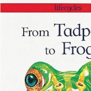 From Tadpole to Frog (Lifecycles)