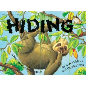 Hiding (Wonderwise)