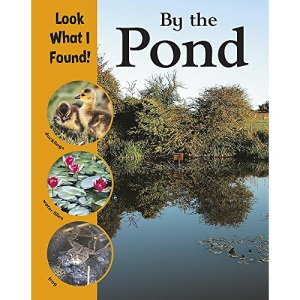 By the Pond (Look What I Found!)