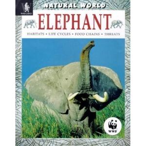 Elephant: Habitats, Life Cycles, Food Chains, Threats (Natural World)