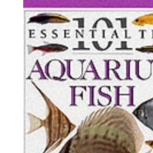 Aquarium Fish (101 Essential Tips)