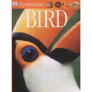 Bird (Eyewitness)