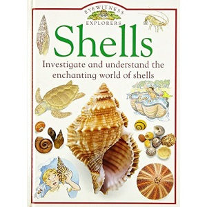 Shells (Eyewitness Explorers)