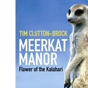 Meerkat Manor: Flower Of The Kalahari