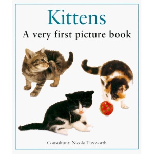 Kittens: A Very First Picture Book (A very first picture board book)