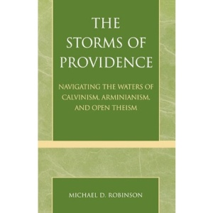 The Storms of Providence: Navigating the Waters of Calvinism, Arminianism and Open Theism