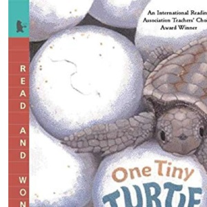 One Tiny Turtle: Read and Wonder (Read and Wonder (Paperback))