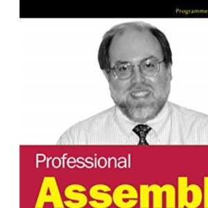 Professional Assembly Language Programming (Programmer to Programmer)